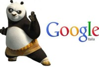 "Google Panda tutela Youtube, e il caso ""not provided"" di Google Analytics."